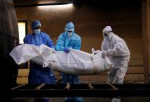 """Photo of 7 وفيات و574 إصابة جديدة بفيروس """"كورونا"""" في الضفة وغزة"""