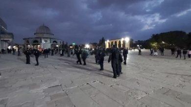 Photo of الاحتلال يعتقل حارسا يعمل في دائرة الأوقاف بالقدس