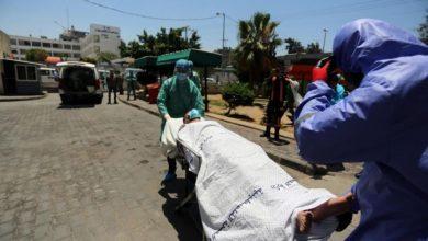 Photo of غزة: 7 وفيات و735 إصابة بكورونا في خلال 24 ساعة