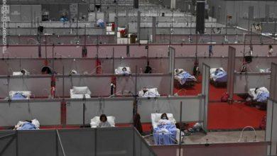 Photo of إصابات فيروس كورونا تتخطى 81 مليونًا عالميًا