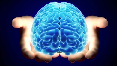 Photo of نستخدم 10% منه والموسيقى تحفز الذكاء.. 5 خرافات عن الدماغ دحضها العلماء
