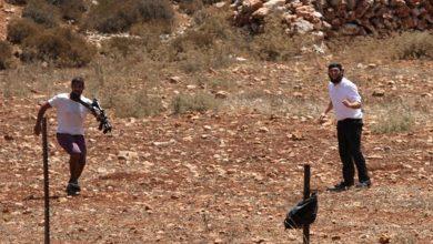 Photo of مستوطنون يهاجمون منازل الفلسطينيين شرق يطا