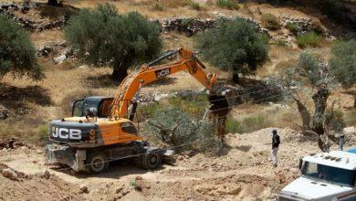 Photo of جيش الاحتلال يقتلع ألفي شجرة زيتون وسط الضفة الغربية