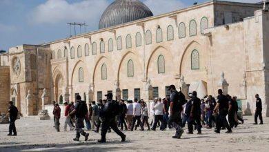 Photo of الاحتلال يمنع نشاطات لمكتبة الأقصى في ساحاته