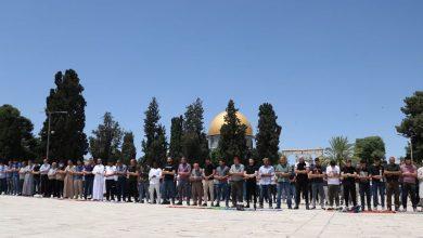 Photo of آلاف الفلسطينيين يحيون المولد النبوي بالمسجد الأقصى