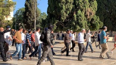 Photo of عشرات المستوطنون يقتحمون المسجد الأقصى